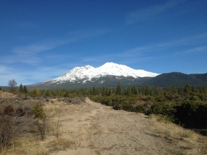 mount shasta podcast