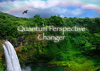 Quantum Perspective Changer